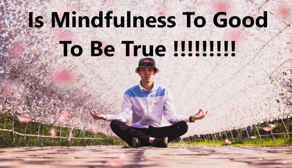 Can Mindfulness be Too Much of a Good Thing