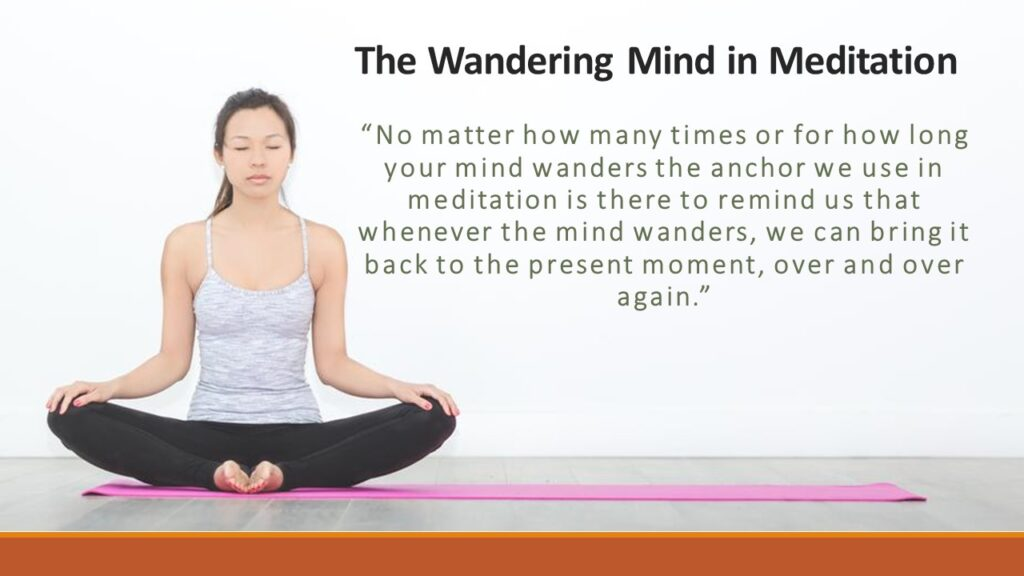 The Wandering Mind and Finding a Suitable Anchor of Attention in Meditation